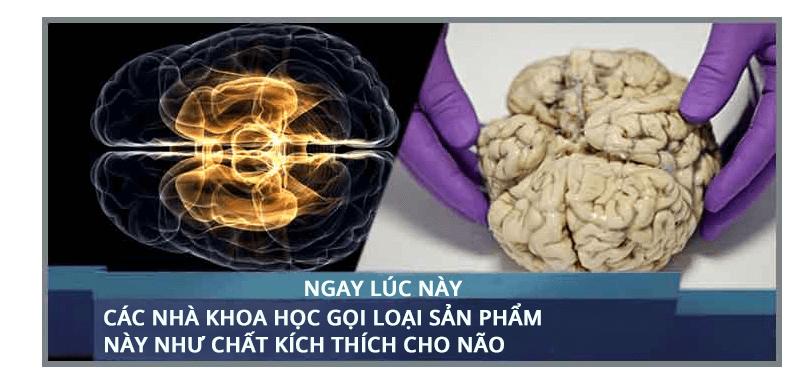 Neurovidan 3