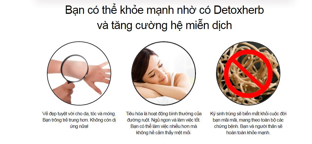 detoxherb vn1